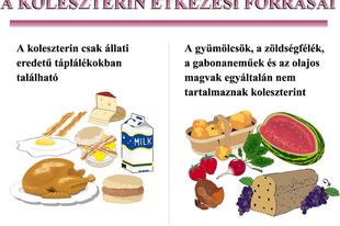 Amit a koleszterinről tudni kell...
