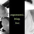 Üdvözöllek a vegamami.blog.hu-n!