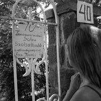 balatoni vendéglátás és önkormányzatok kapcsolata - avagy az ibolya történet