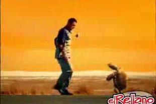 Brahma reklám - teknős