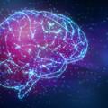 Google-memória: Hogyan változtatja meg az internet az agyunkat?