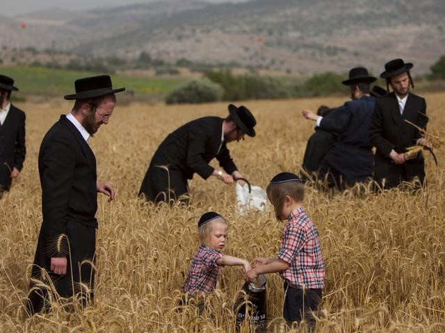 Hogyan lett a zsidó aratási ünnepből pünkösd?