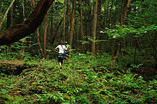 220px-aokigahara_forest_03.jpg