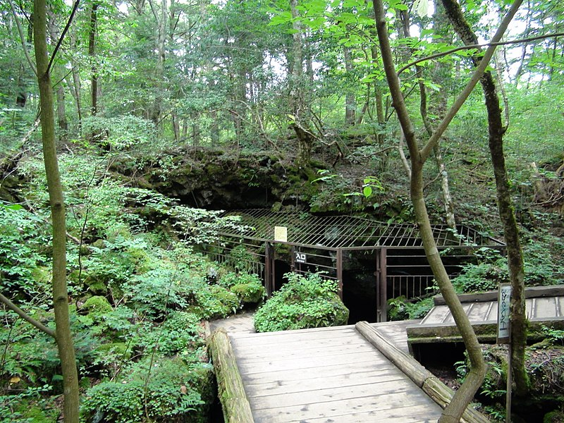 800px-lake_saiko_bat_cave_entrance.jpg