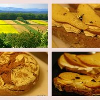 Nemrecept: sajtos melegszendvics de luxe
