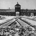 Január 27. A holokauszt nemzetközi emléknapja