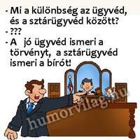 Bita Judit ügyvéd fegyelmi eljárása 4