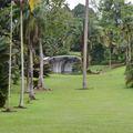 Szingapúri botanikus kertek (Szingapúr)