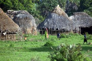 A szent kaya erdők (Kenya)
