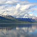 Bálnales Izlandon a Húsavík-öbölben