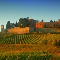 Siena, a középkori városka