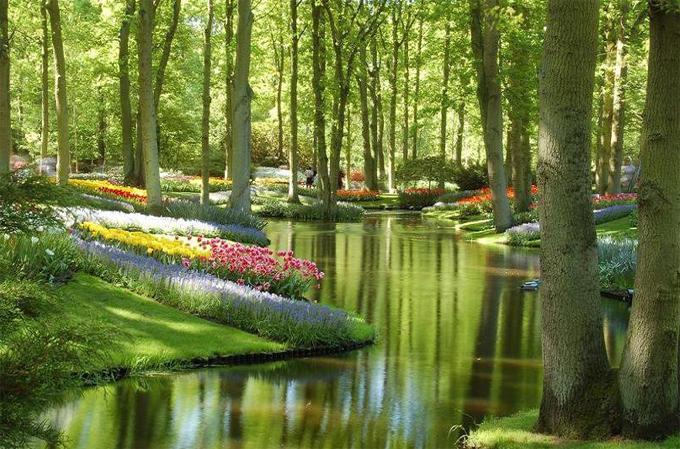 Keukenhof Gardens.jpg