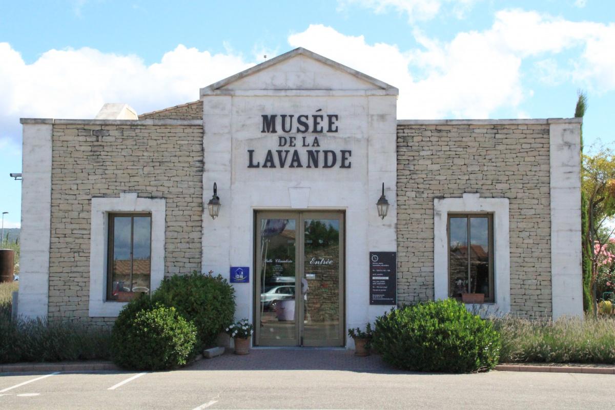 Levendula Múzeum Coustellet.jpg
