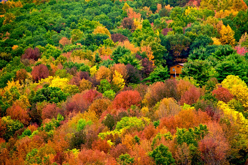 Appalache-hegység, Egyesült Államok(by Nigel Goodman).jpg