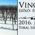 Vince-napi szőlő- és borszentelés