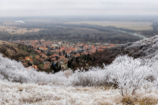 TOKAJ ÉS A TÉL címmel hirdet fotópályázatot a Tokaj Alapítvány