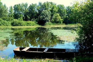 #calmness #silence #peace  Photo by Sóstói András  #tokajwineregion #visittokaj #tokajhegyalja #instahungary #instahun #turatajolo #loves_hungary #visithungary @eurotravellers #UNESCO #unescoworldheritage #unescoworldheritagesite #discoverglobe #instaphoto #pictureoftheday #picoftheday  @elmenyitthon