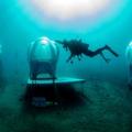 Termessz bazsalikomot víz alatti üvegházban!