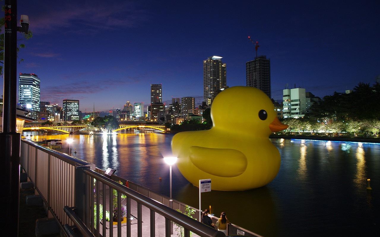 Ducky Oszakában