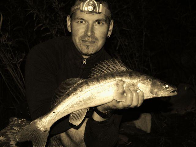 Vigyázat! Kezdő pergető horgász!