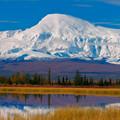 Érdekességek az Egyesült Államok nemzeti parkjaiból