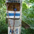 Pilisszentlászló-Visegrád - Kéktúra09