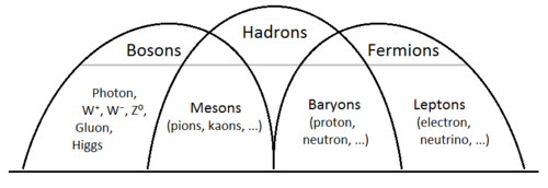 500px-Bosons-Hadrons-Fermions.png