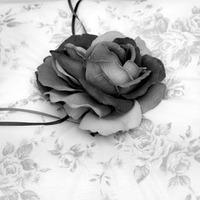 Fekete-fehér gyűrűpárna