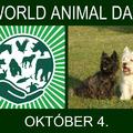 Állatok világnapja... október 4.