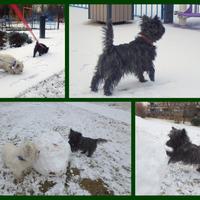 Támad a tél