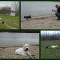 A Duna partok...