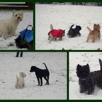 A tél az idén vasárnapra esett.