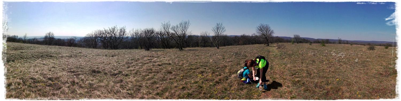verkor_panorama.jpg