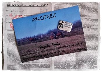 nosza_oklevel.jpg