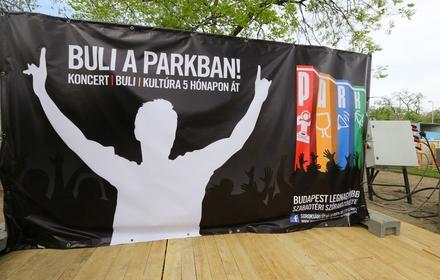 budapest-park-koncert-2.jpeg