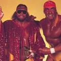 Hulk Hogan VI. (1988)