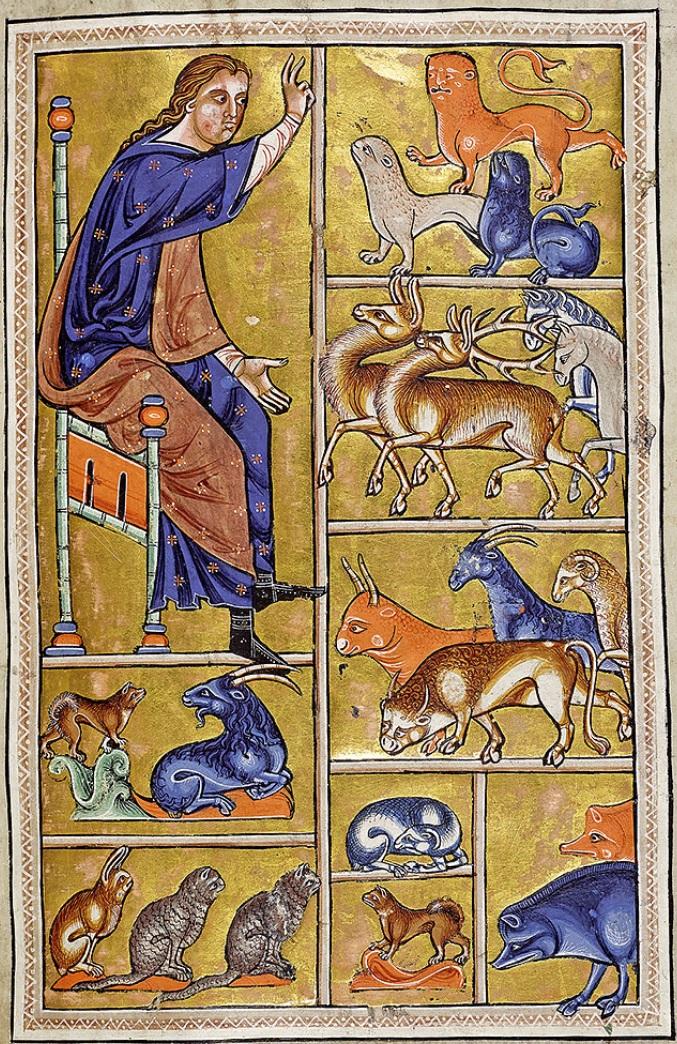 aberdeen-best_f05r-adam-names-animals.jpg