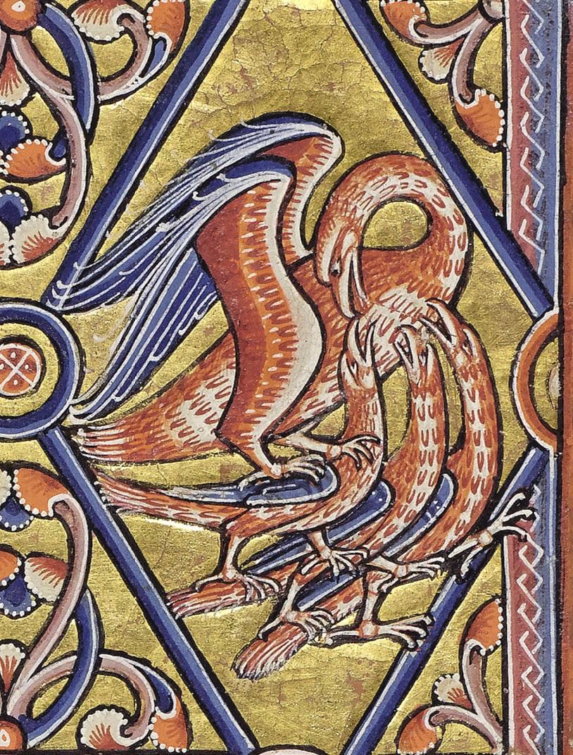 aberdeen-best_f35r-pelican-det.jpg