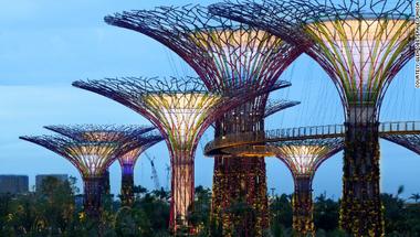 Íme a jövő: napkollektoros szuperfák Szingapúrban