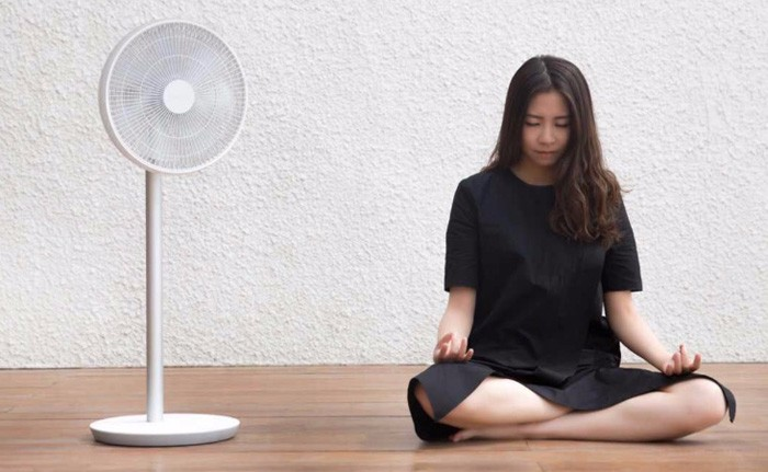 xiaomi_mi_smart_dc_frequency_stand_fan_6.jpg