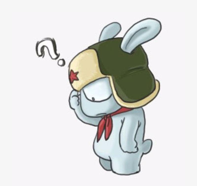 小米科技-rabbit.jpg