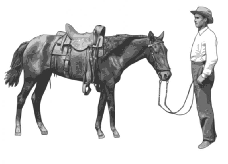 horse-cowboy.png