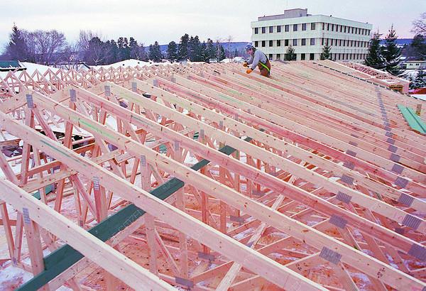 simon_fraser_lodge_roof_tru-m.jpg