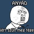 ANYÁÁÁD