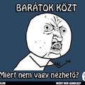 BARÁTOK KÖZT