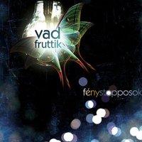 Vad Fruttik - Fénystopposok (2010)