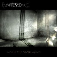 Evanescence - In The Shadows (2007)
