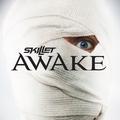Skillet - Awake (2009)