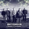 Skydrive - Ember a tükörben (2013)