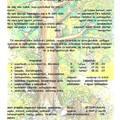 Bakonyi erdőleső élménytábor - Pénzesgyőr